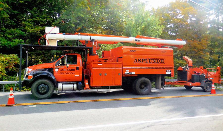 Asplundh Tree Service