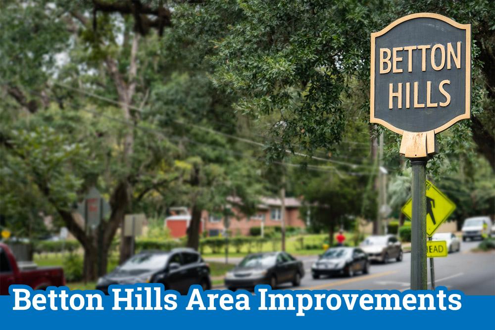 Betton Hills Area Improvement